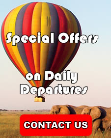Special Kenya Safari Offers